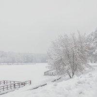 Февральские снежности :: Вера Лучникова