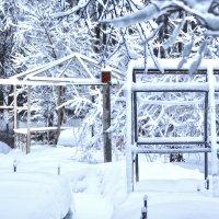 Снегопад в Ромашково 13-02-2019 :: Юрий Яньков