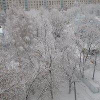 Зимнее утро в Москве :: Ольга Довженко