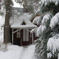 На даче. Дом соседей. :: Ольга Довженко