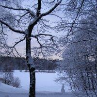 Зимний закат на Лебедянском пруду :: Анна Воробьева