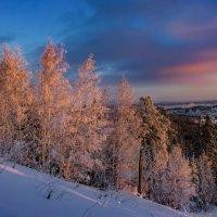 Утро на склоне :: Vladimbormotov