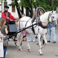 ямщик, не гони лошадей :: Олег Лукьянов