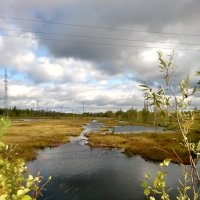 Природа севера :: Marina Pelymskaya