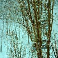 Снег, снег :: Raduzka (Надежда Веркина)