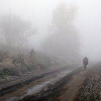 Про осень и туман... :: Александр Резуненко