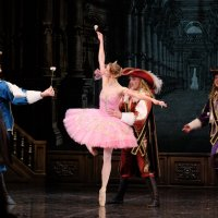 """Балет """"Спящая красавица"""". Принцесса Аврора и принцы-женихи :: Валерий Судачок"""