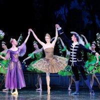 """Балет """"Спящая красавица"""". Фея Сирени, принцесса Аврора и принц Дезире :: Валерий Судачок"""