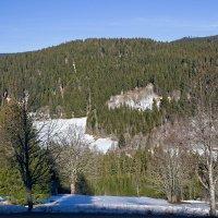 Шварцвальд температура воздуха +15 а снег лежит Высота около 1200м :: igor G.