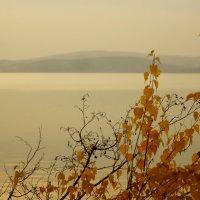 Осень в пастельных тонах... :: Анна Суханова