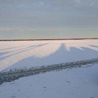 Утренние солнечные тени :: golfstrim