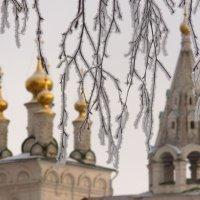 За снежной завесой. :: Ольга Кирсанова