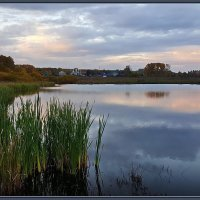 Старый пруд :: gregory `