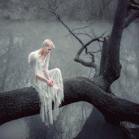 Fallen :: Андрей Васильев