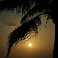 На закате :: Ветер Странствий.орг