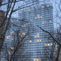 Вот и окна в сумраке зажглись... :: Дмитрий Никитин