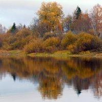 осень :: Юлия Ошуркова