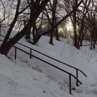 Февраль вспомнивший, что он - еще не март :: Андрей Лукьянов