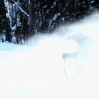 Снежная пыль :: Радмир Арсеньев