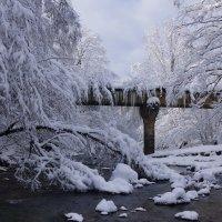 Мост над рекой ... :: Serega Денисенко