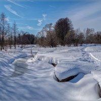 Скоро Весна ... :: Андрей Дворников