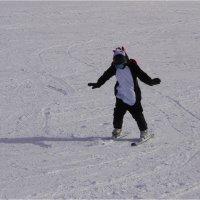 вот такой лыжник) :: Ирина ***