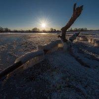 Февральский рассвет на Волге. :: Виктор Евстратов