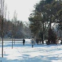 В парке зима :: Валентин Семчишин