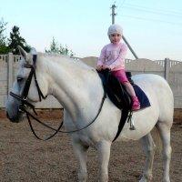 на белом коне, но не принц :: Юлия Ошуркова