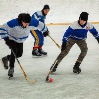 Хоккей с мячом. :: Валентин Кузьмин