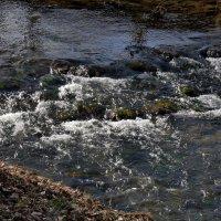 живая вода :: Heinz Thorns