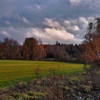 Стремительная осень :: Лара Симонова