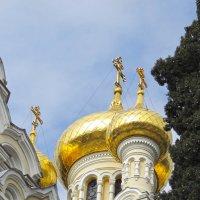 Купола храма Александра Невского :: ИРЭН@ .