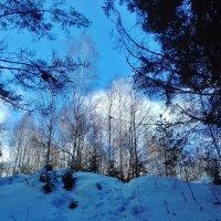 голубое небо :: Владимир