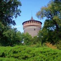 Башня дворца Сфорца :: Сергей Карачин