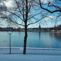 Последний день зимы Стокгольм :: Swetlana V