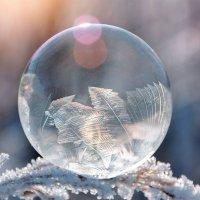 Точка замерзания :: Дмитрий Стародубцев