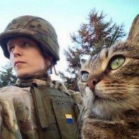 А завтра день кота :: Александр Скамо