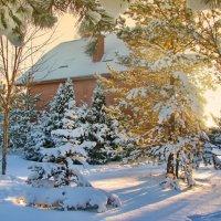 Снежные зимы :: Лара Симонова
