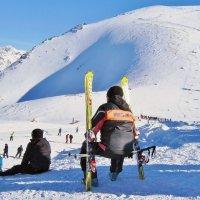 Зачем сидеть на снегу :: Елена (ЛенаРа)