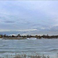 Невские берега :: Александр Алексеенко