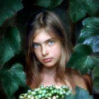 Девочка и виноград.... :: Андрей Войцехов