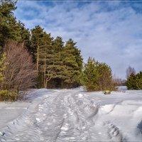 Крайние дни зимы 2019 :: Андрей Дворников