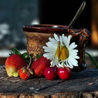 Про летний дачный кофе-брейк... :: Александр Резуненко