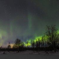 Северное сияние :: Сергей Пеунов