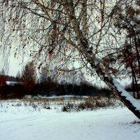 У реки... :: Нэля Лысенко