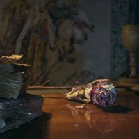 Придумаю много нежных слов, приду, все тебе скажу :: Ирина Данилова