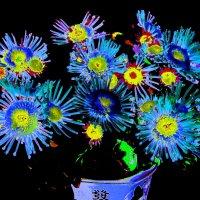 Цветочные вариации 5 :: Елена Куприянова