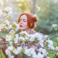 В ожидании весны :: Ирина Kачевская