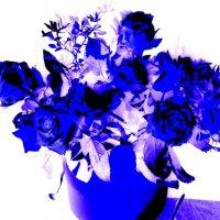 Музыка цветов 2 :: Елена Куприянова